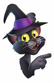 An illustration of a black witches cat in pointy witch hat leaning round a Halloween sign or banner and pointing poster