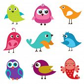 Set of cute multicolored birds poster
