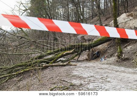 Safety ribbon on damaged forest road