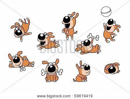 Cheerful dog puppy
