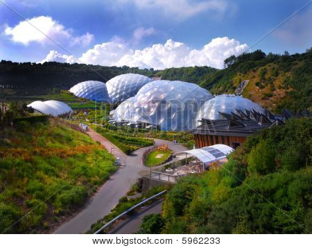 The Eden Project Cornwall England, Nature Conservation poster