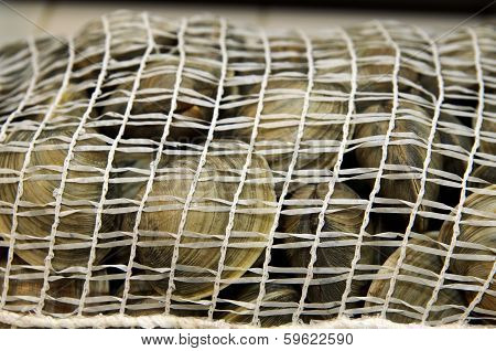 Fresh clams in mesh seafood bag ready to cook poster