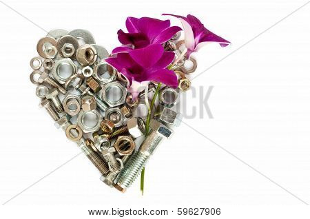 Heart And Orchid