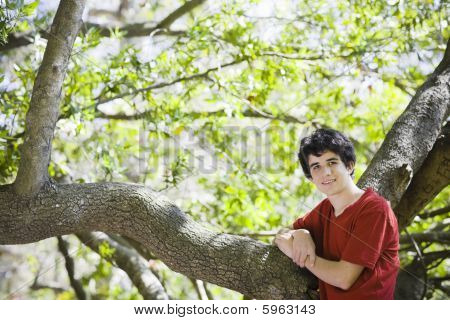 Teenage Boy Standing In Woods