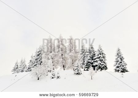 beautiful winter landscape in Sirnea, Romania poster