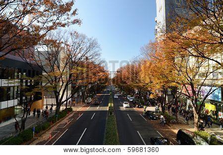Tokyo - Nov 24: People On Omotesando Street On November 24. 2013