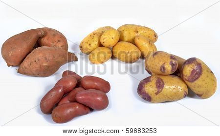 poster of four varieties of potatoes on the background