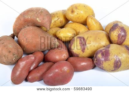 four varieties of potatoes on the background poster
