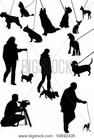 exhibition of dogs animals cocker spaniel nature poster