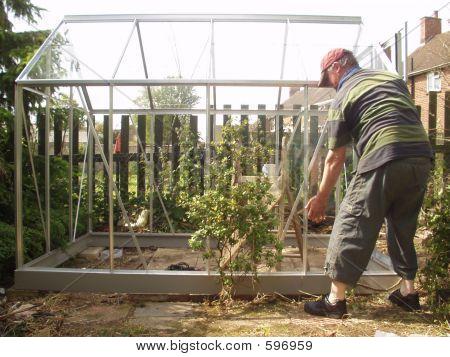 New Greenhouse Glazing