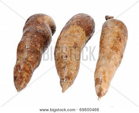 three whole manioc (cassava) isolated on white background poster