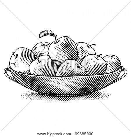 Ripe apples in a dish. Engraved vector illustration