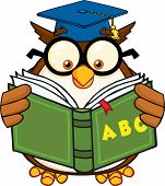 Wise Owl Teacher Cartoon Mascot Character Reading A ABC Book. Illustration Isolated on white poster