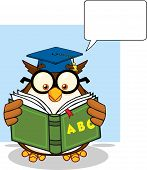 Wise Owl Teacher Cartoon Mascot Character Reading A ABC Book And Speech Bubble  Illustration Isolated on white poster