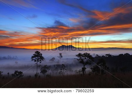 misty morning sunrise dramatic sky in mountain at Thung Salang Luang National Park Phetchabun,Thaila