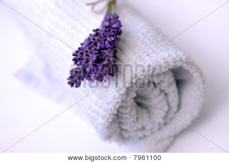 Lavender And Towel