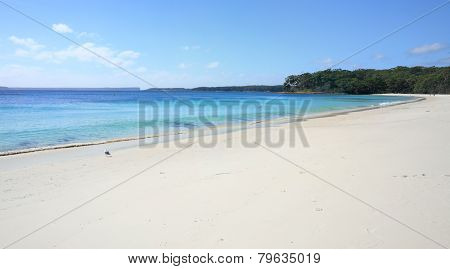 Pristine Water At Greenfields Beach Jervis Bay