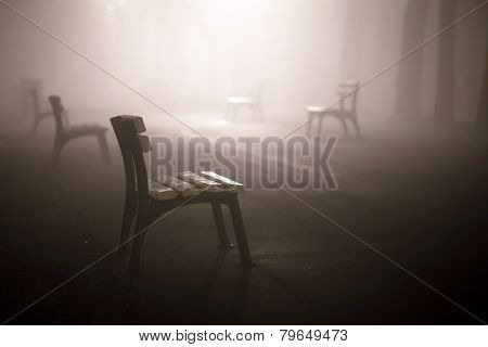 Foggy Park Alley With Benches On Night
