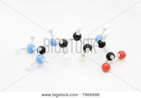 Arginine Amino Acid Molecule