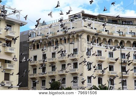 Pigeons Flying Over A Building In Square Aristotelous In Thessaloniki, Greece.