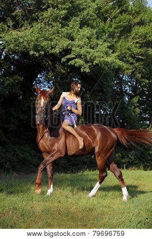 Beautiful blond woman riding horse bareback in evening field