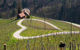 Road in a shape of a heart, Maribor, Slovenia