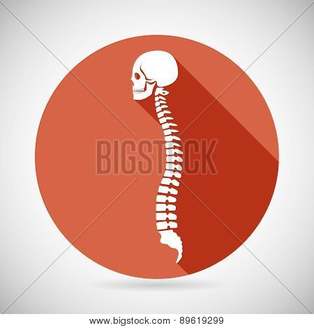 Skull and Spine Icon Symbol Concept Flat Design Vector Illustration