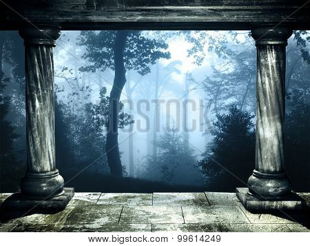 Frame with two medieval columns and mysterious landscape of foggy forest