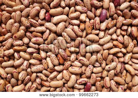 Borlotti Beans, Or Cranberry Beans Background