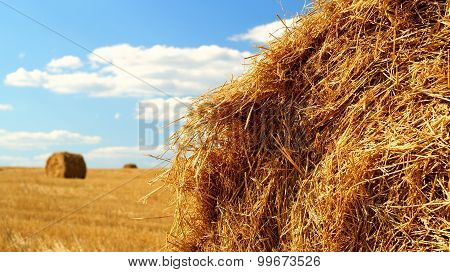 Sheaves of hay
