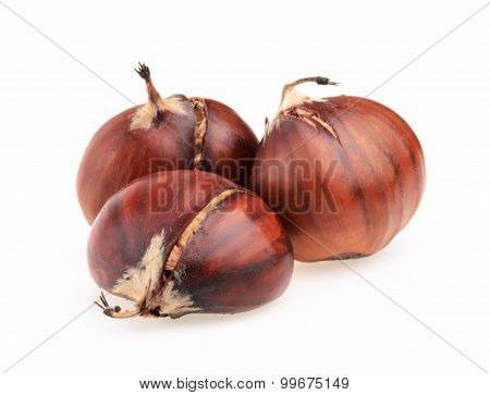 Spanish Chestnuts Isolated On White