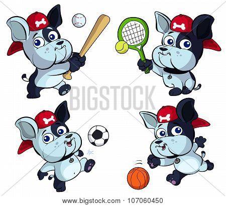cute puppy bulldog sport set