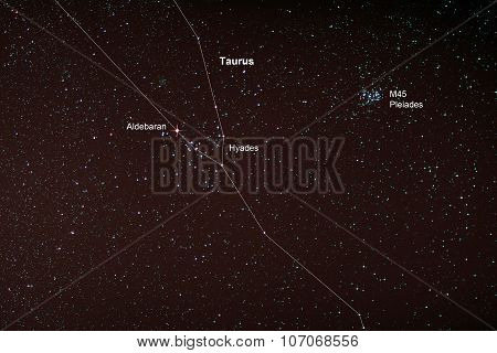 Starfield With Taurus And Pleiades