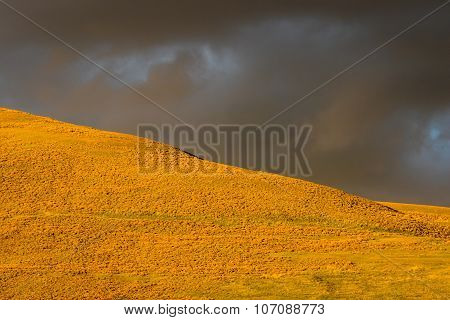 Stormy Field And Sky