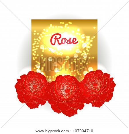 Gold bokeh background with red roses. G