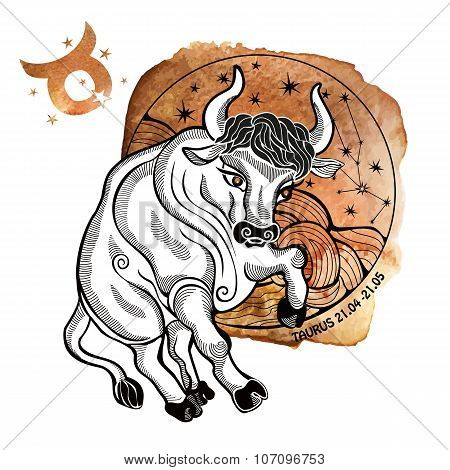 Taurus zodiac sign.Horoscope circle.Watercolor stein