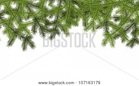 White background with fir branches. Vector paper illustration.