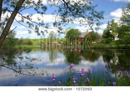 The Farmers Pond