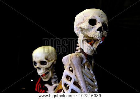 singing skeleton