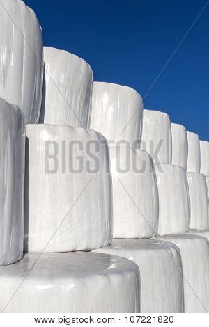 White silage bales