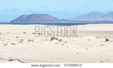 Dunes, Sand, Sea And Volcano In Fuerteventura