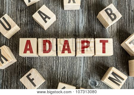 Wooden Blocks with the text: Adapt