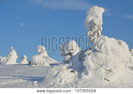 Winter landscape in Lapland, Finland