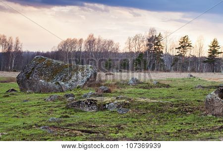 Rural Landscape With Stones And Green Grass