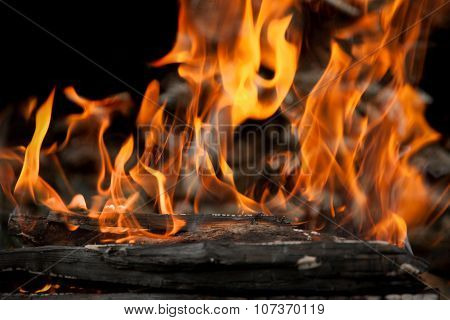 Burning Wood In Fire