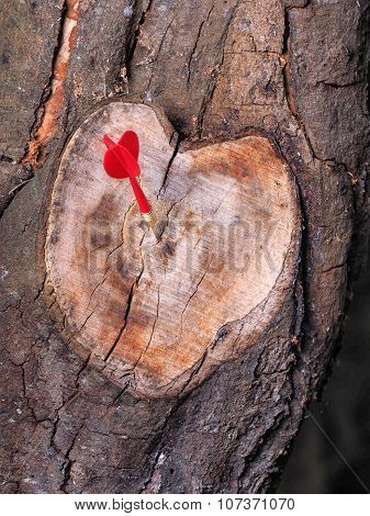 Heart shaped tree branch cutoff in natural color with a red dart