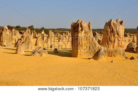 Pinnacles Desert: Natural Phenomena in Western Australia