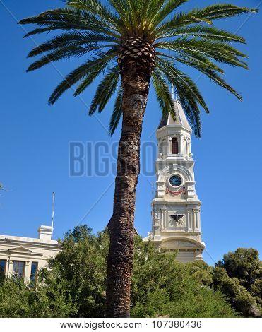 Fremantle Clocktower: Behind the Palm