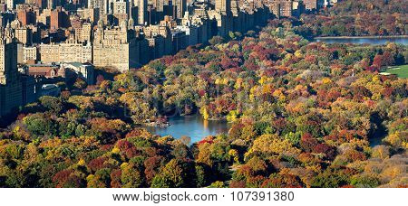 Aerial Autumn View Of Central Park And New York City