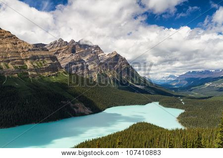 Vista over Peyto Lake Icefields Parkway Alberta Canada poster